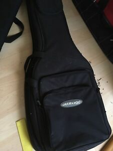 Thick double guitar case