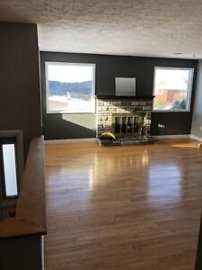 3 bedroom spacious house for rent