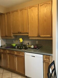 kitchen cabinets and counter top