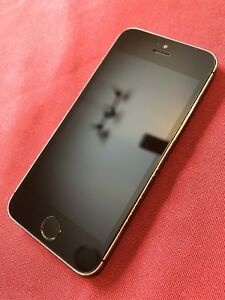 iPhone 5s 16GB with case