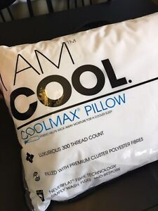 """I Am Cool"" Standard Size Pillow"