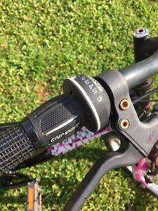"20"" wheels girl's bike; gears and hand brakes"