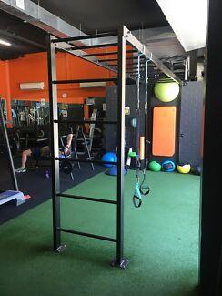 Wanted: Gym Monkey Bars