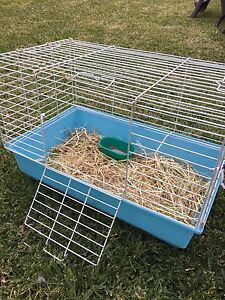 Guinea pig/rabbit cage Boolaroo Lake Macquarie Area Preview