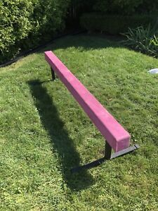 The Beam Store Pink Suede 6 ft balance beam