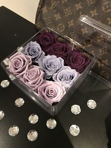 Ombré everlasting rose box that last over 1 year