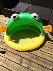 Inflatable Frog Pool for baby
