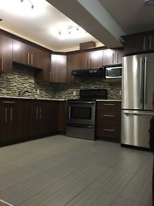 Basement for rent 2 bedroom (Skyview area)