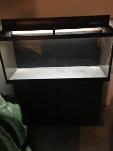 60 gallon aquarium with stand