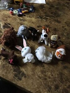 Pets from the movie