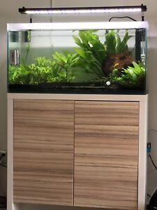 Fluval F90 aquarium