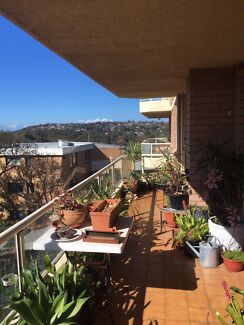 Room fir rent in sunny Balgowlah  (bills included, open to couples )