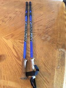 Bâton et sac de marche