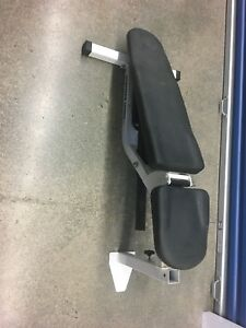 Northern lights FID commercial bench