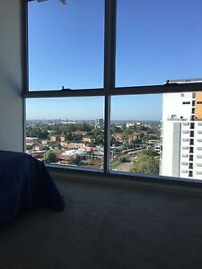 Females only - Sharing Room with private bathroom for rent Parramatta Parramatta Area Preview