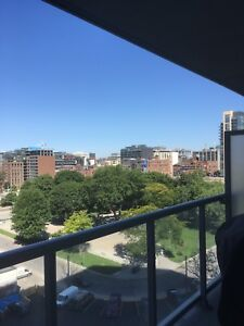 Spacious 1 BR + 1 WR Unit for Lease. Heart of Downtown!