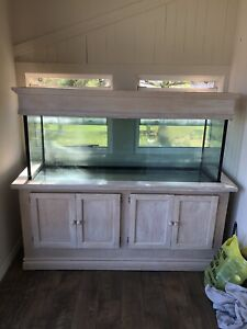 100 gallon aquarium with stand and canopy