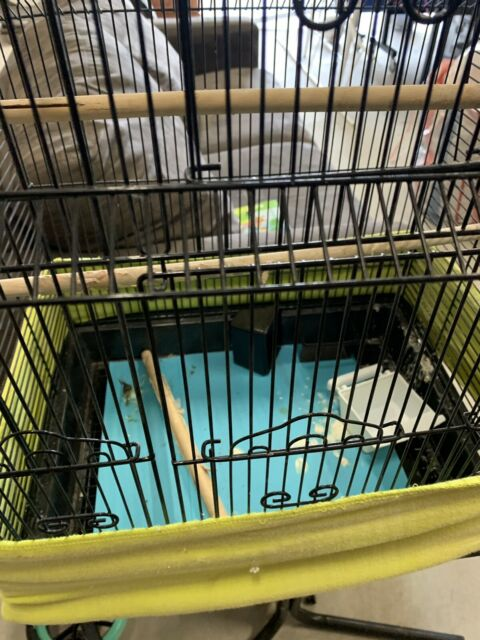 Large Bird Cage On Stand Pet Products Gumtree