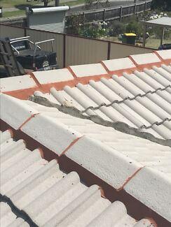 Roof restoration/ roof painting