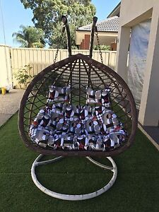 Swing Egg Pod chair Underdale West Torrens Area Preview