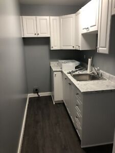 One Bedroom Apartment, newly renovated!