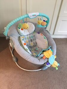 Taggies baby bouncer seat