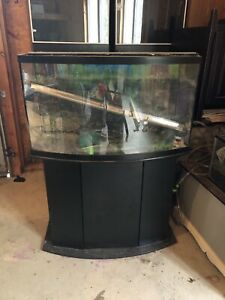 Aquariums with everything needed