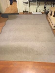 2 area  rugs for sale.
