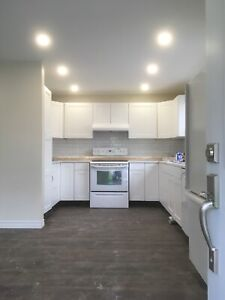Furnished 7 Bedroom House Avail Aug 1