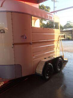 New South Wales Horses Amp Ponies Gumtree Australia Free