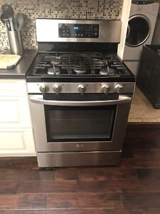 Stainless gas oven