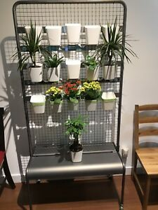 Indoor. Planter reversible and movable. Made to order.