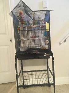 Bird Cage & Stand with 2 Budgies