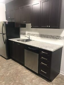 Upgraded apartments in Trenton! A must see!