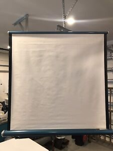 Vintage projection screen