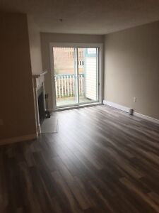 North End- Renovated 1 bedroom condo w/low fees