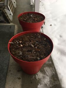 Pot à fleur très bonne qualité valeur de $ 90 chacun