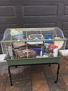 Guinea  pig cage on wheels $160