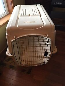 Extra Large Pet Carrier Available