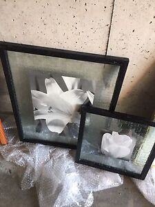 Set of 2 pictures.   Black and white flowers.  Black frame