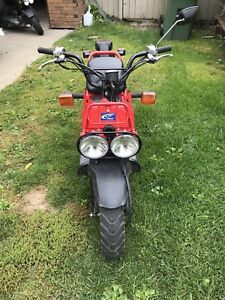 honda ruckus red