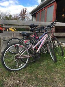 Lot de bicyclettes