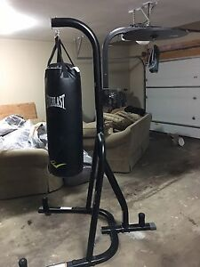 Punching bag, speed bag and stand