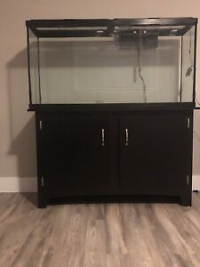 60 gallon tall aquarium (stand included)