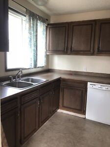 Comfortable 1 bedroom apartment available