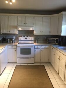 Kitchen Cabinet Get A Great Deal On A Cabinet Or Counter In