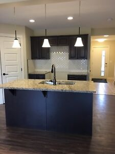 BRAND NEW SOUTH EDM DUPLEX ON PROMO $330K (20K SAVINGS)