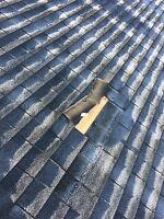 Professional Roofing Repair & Replacement