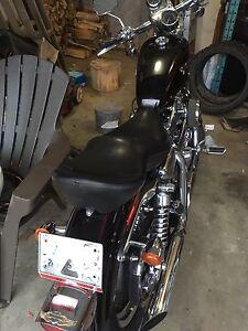 2001 Sporster 2-Person seat