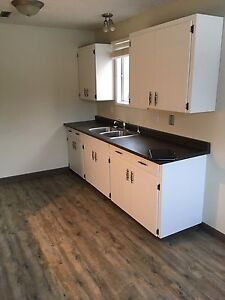 Bright, beautiful lower suite for rent in Fairview
